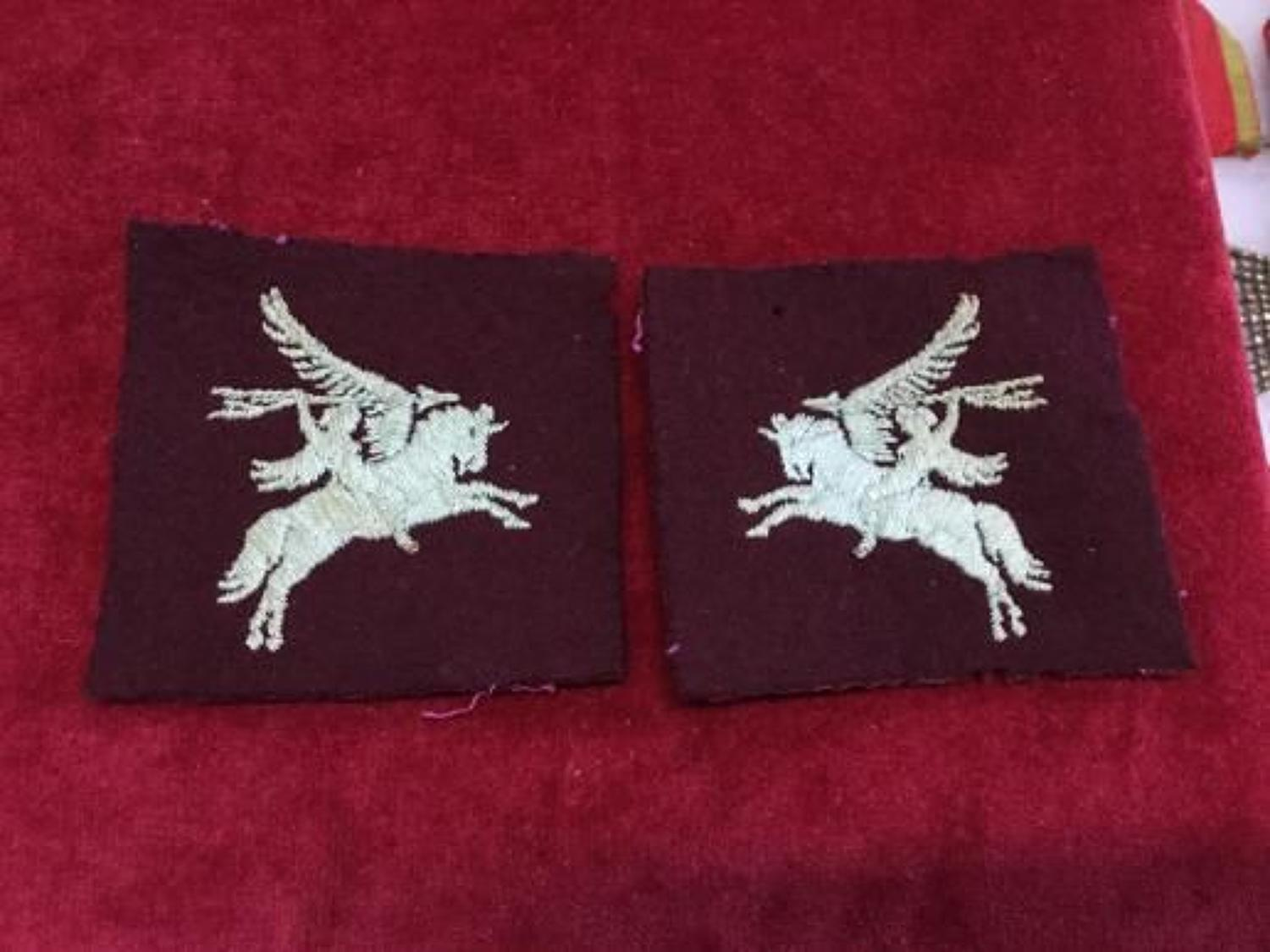 Matched Pegasus felt cloth pair